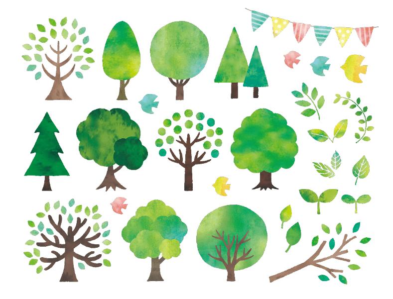 水彩の木などのセット(木、緑、オシャレ、葉、ツリー、森、鳥、ガーランド、ナチュラル、グリーン、新緑、葉っぱ、樹木、森林、小鳥)