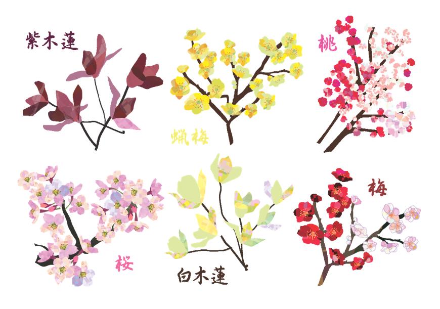 花木セット(木、花木、樹木、春、梅、桃、桜、紫木蓮、白木蓮、マグノリア、蝋梅、紅梅、春の木)