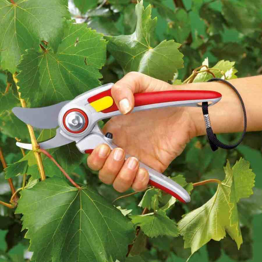 Wolf Garten Professional Secateurs Review