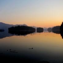 sunrise 2 fox