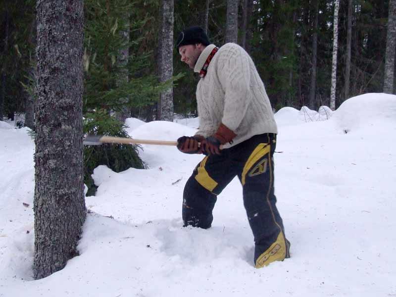 Bäume fällen für ein Naturstamm-Haus in Schweden.
