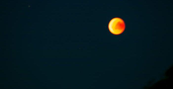 Leicht unscharf: Der von mir fotografierte Blutmond.
