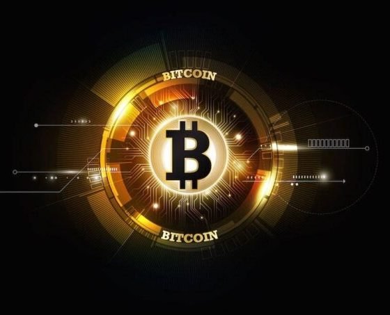 2017 year of the bitcoin