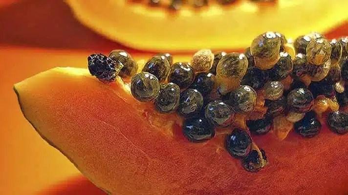 semillas-de-papayas-para-eliminar-parásitos