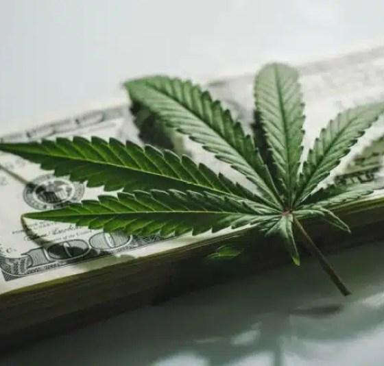 Marihuana acciones