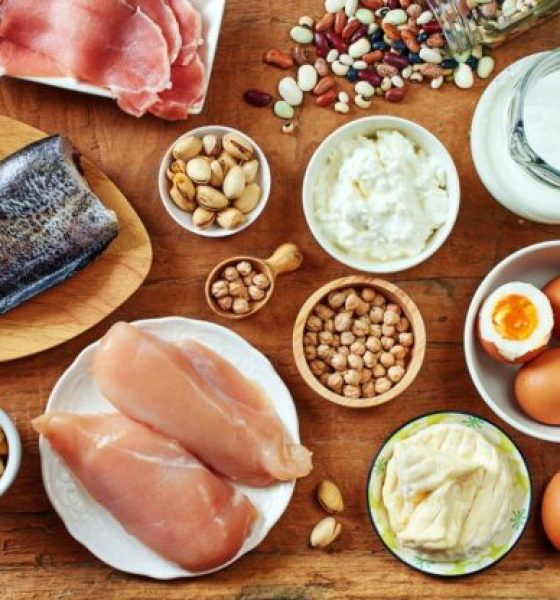 Comer más proteínas genera una mayor actividad de las células satélite, responsables de la regeneración de los tejidos musculares