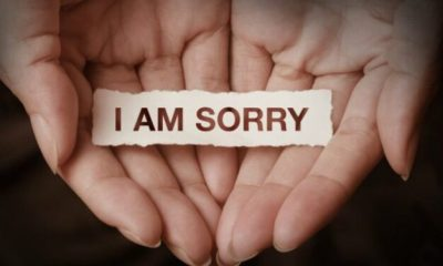 pedir disculpas