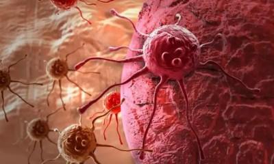 5 cánceres más mortíferos del mundo