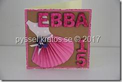 ebba_15