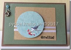 grattis claes 2017