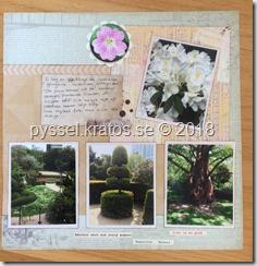 Botaniska trädgården sid 2