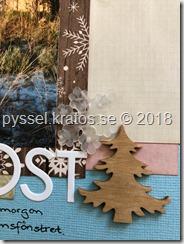 Layout frost närbild2