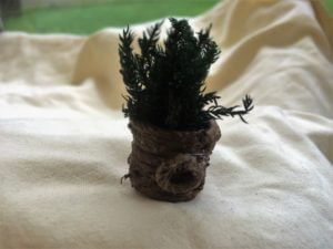 Miniatyrväxt i kruka med hantag sidan