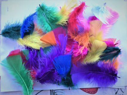 Fjädrar i glada färger, korta