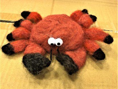 Nåltovad krabba som inspirations modell