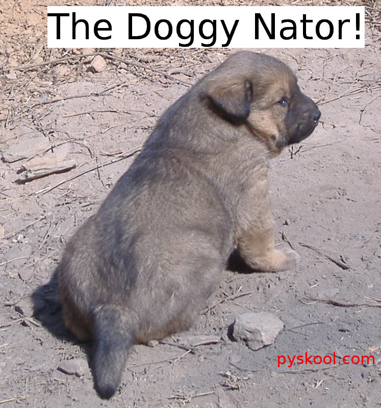 The Doggy-Nator