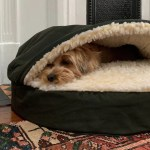 Best Dog Beds According To Dog Experts 2020 The Strategist New York Magazine
