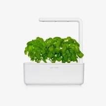 Fai clic e fai crescere Smart Garden 3