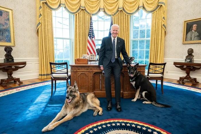Biden dog bites second victim at White House