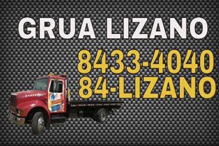 Grúa Plataforma Lizano www.pzactual.com