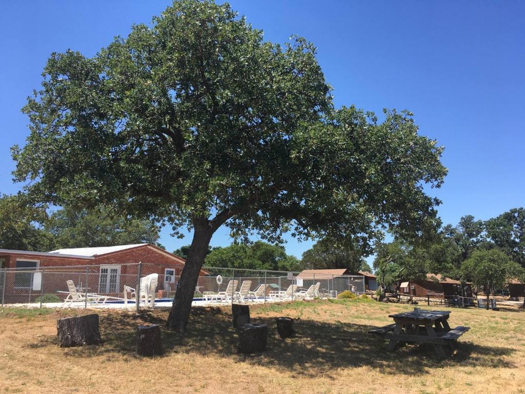 Cedar Lodge Cabin 21 Informationen Und Buchungen