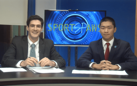 Sports Paws: 11/08/16