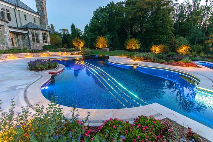 Dazzling Violin Shaped Swimming Pool 3