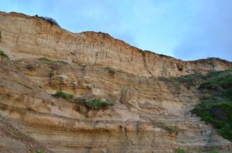 Les falaises de Torrey Pines