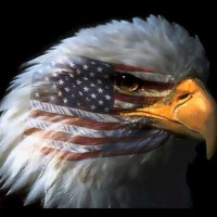 """Q INFOS - USA : """"République restaurée ?"""""""