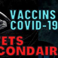 """Vivre sainement : """"Vaccins covid-19, effets secondaires"""""""