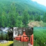 The Lodge Maribaya Cibodas Lembang