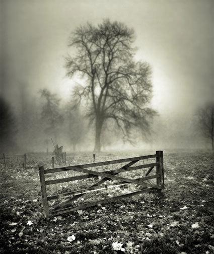 Gate fog