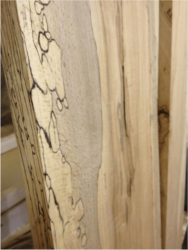 spalted beach2