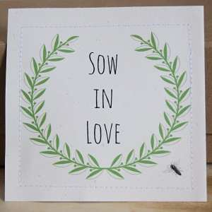 Sow in love bee and butterfly seeds