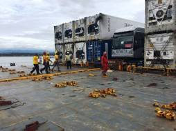 """The """"Nyuti"""" arrived in a container a the Puerto Limon"""