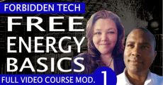 FREE ENERGY BASICS (VIDEO)
