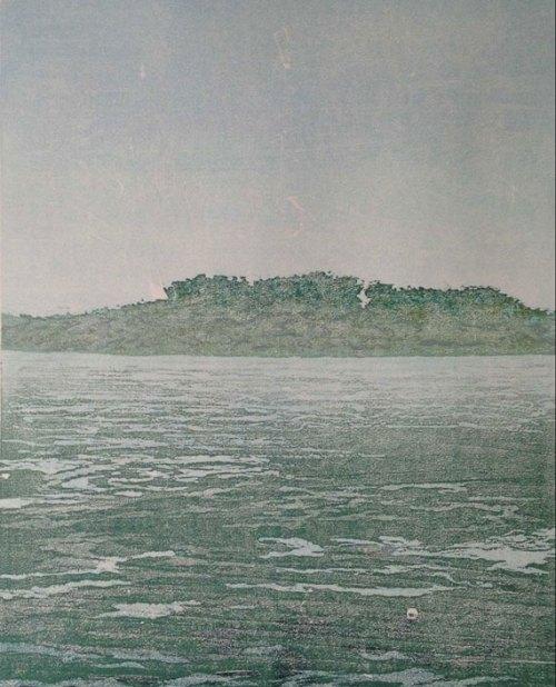 Warren-Cooke-Land-and-Sea-#31-(Balnarring)-web