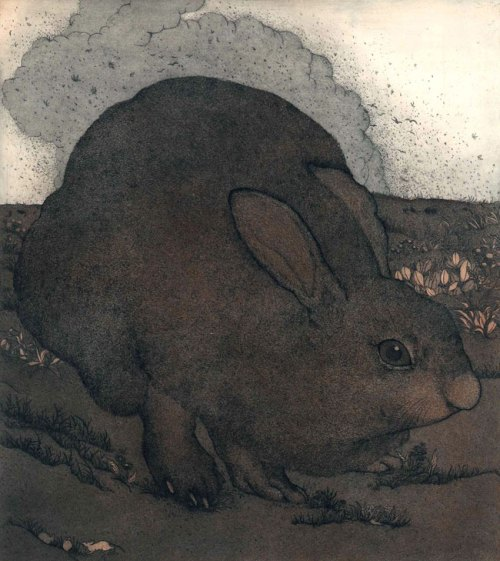 Kyoko-Imazu-Japanese-hare