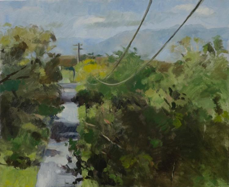 Evan Salmon A-road-with-shadows-(Kembla-Grange)