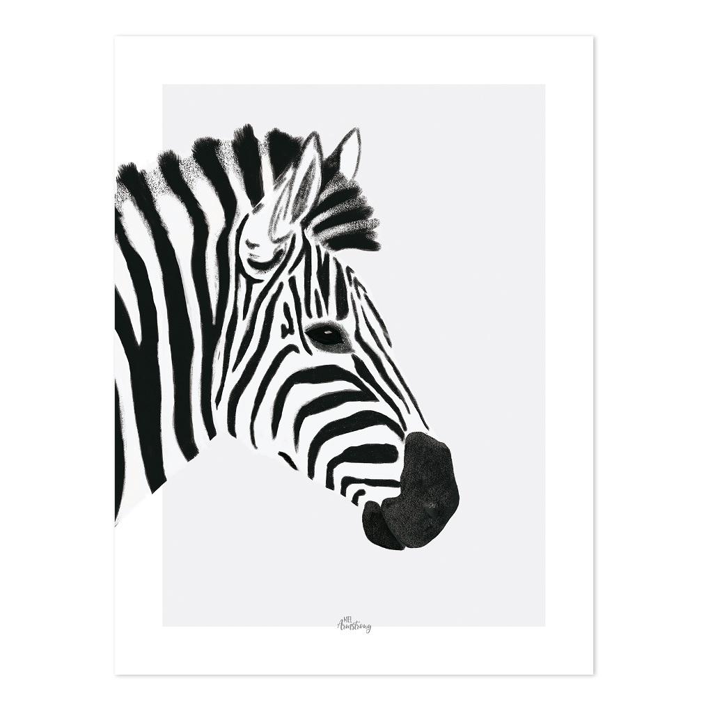 Zebra Poster Serengeti Van Lilipinso Kopen Qid