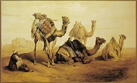 camel-painting