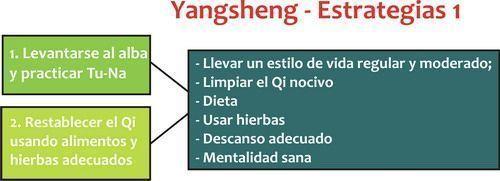 Las estrategias del Yangsheng
