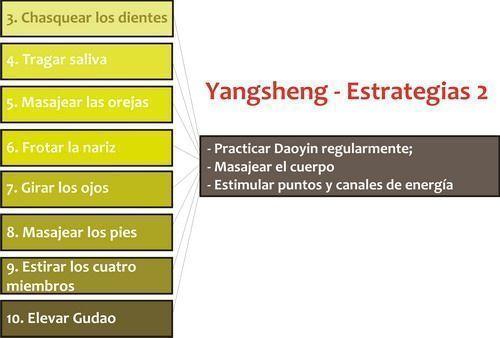 Las estrategias Yangsheng