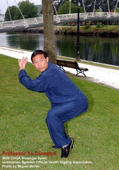 El profesor Yu Dinghai practicando Wuqinxi en Pontevedra.