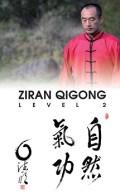 ZiRanQiGongLvl2
