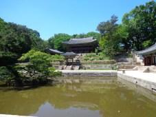 pond dalam secret garden