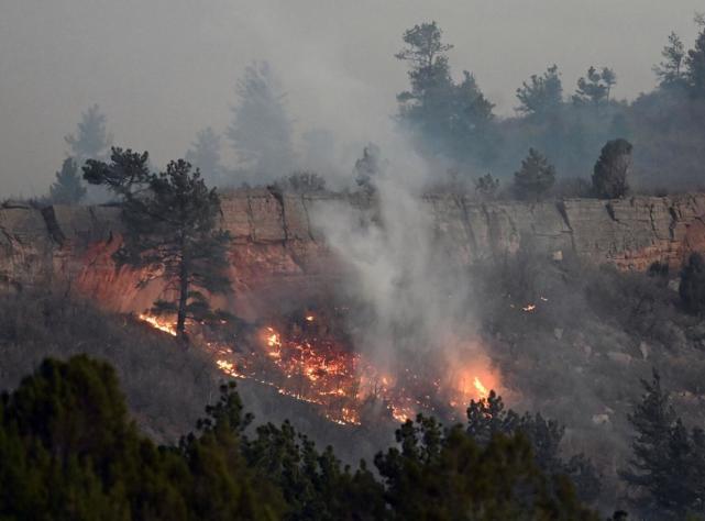 中越战争,我军如何辨别越南女特工?张万年有奇招:一撩二看三嗅