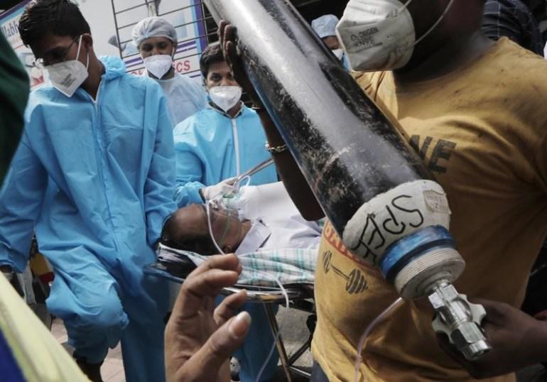 原来如此,怪不得牛的地位在印度如此神圣