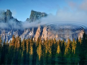 carezza-lake-reflection_73862_1006x754