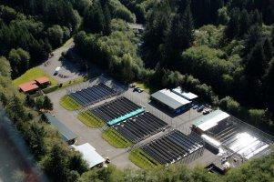 Quinault Hatcheries Program | Quinault Fisheries Deparment